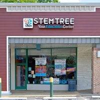 Stemtree