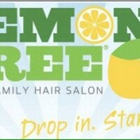 Lemon Tree Your Family Hair Salon Logo