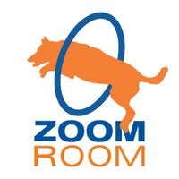 Zoom Room Logo