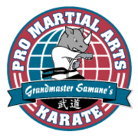 Pro Martial Arts Franchise Corp. Logo