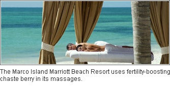 The Marco Island Marriott Beach Resort in Marco Island, Florida