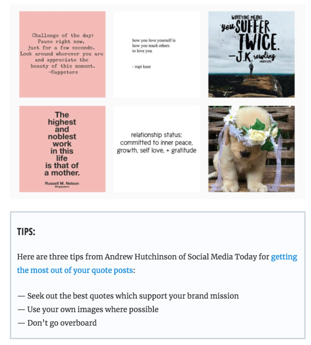 What to Post on Each Social Media Platform: The Complete Guide to