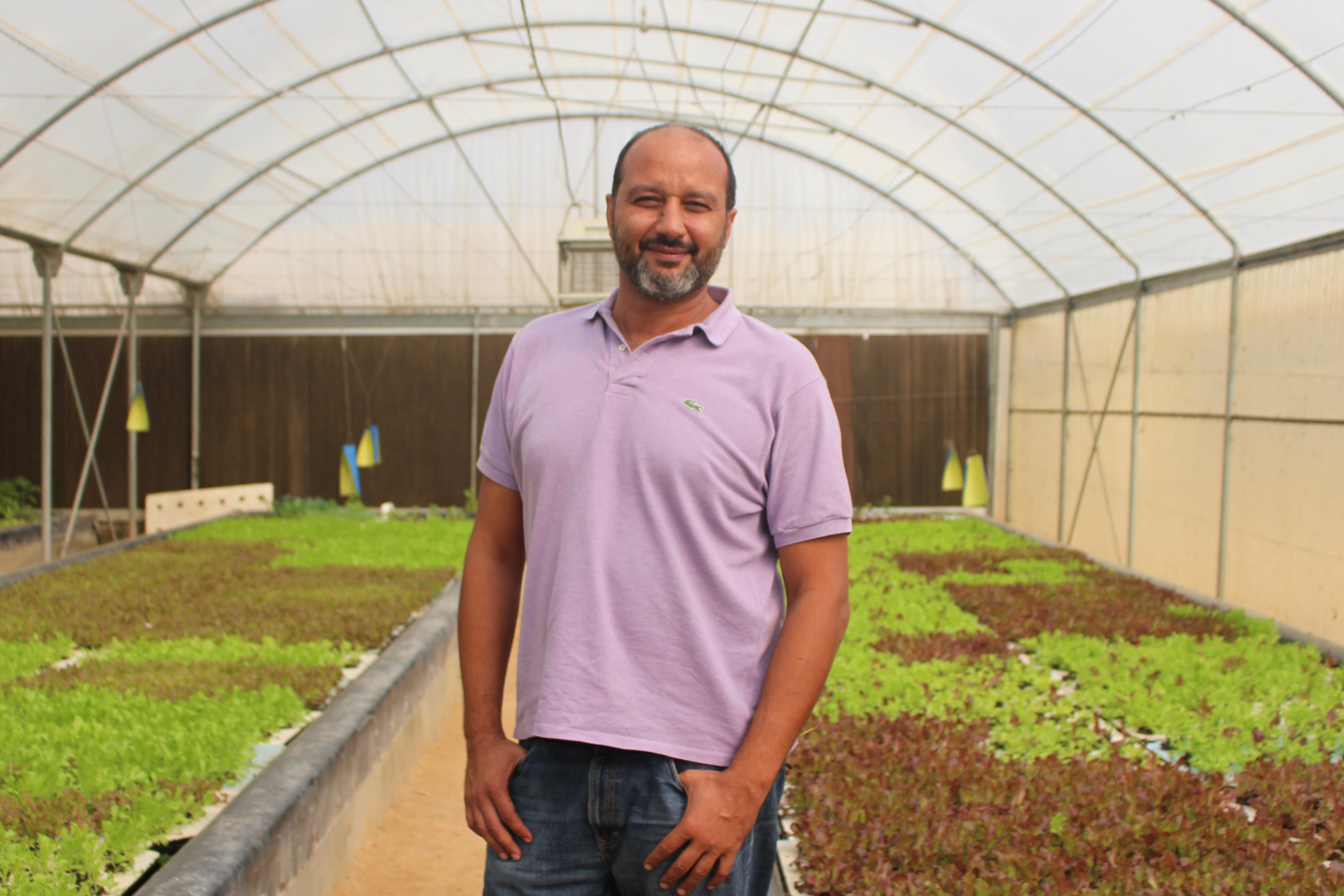 Commercial Aquaponics Startup Cost In India