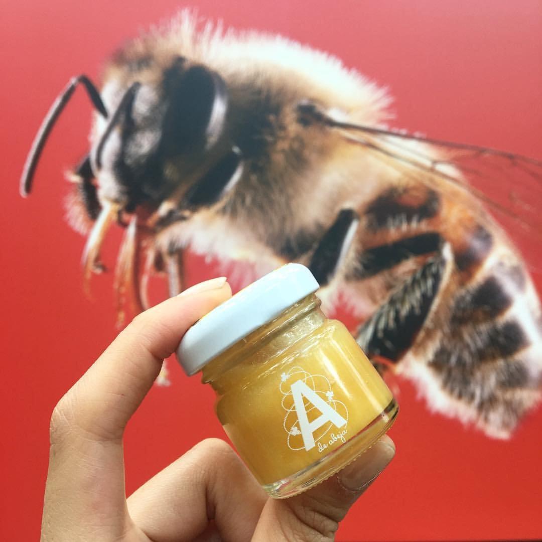 La emprendedora que quiere salvar a las abejas de México