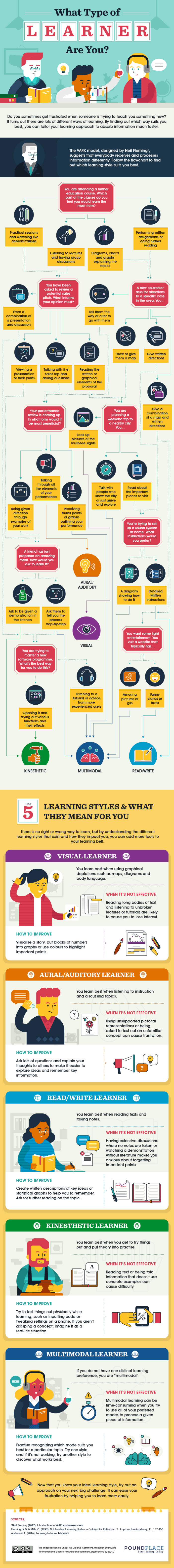 What Type of Learner Are You? (Infographic)
