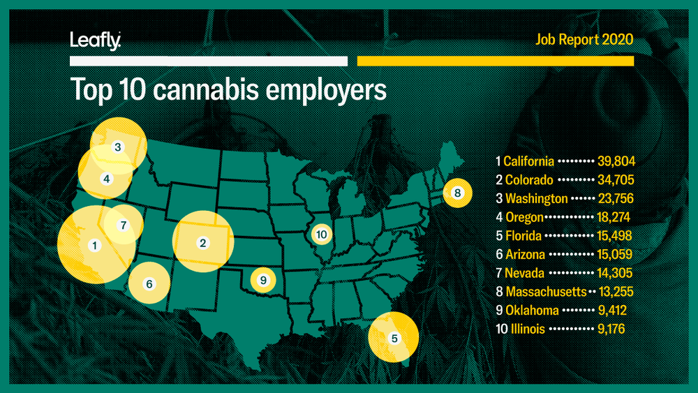 Leafly's 2020 Jobs Report.