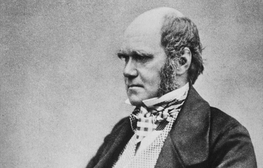 """Charles Darwin spent most of his life as a naturalist who kept to himself, but at age 50 his """"On the Origin of Species"""" changed the scientific community forever in 1859."""