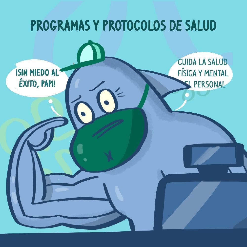 Programa y protocolos de salud