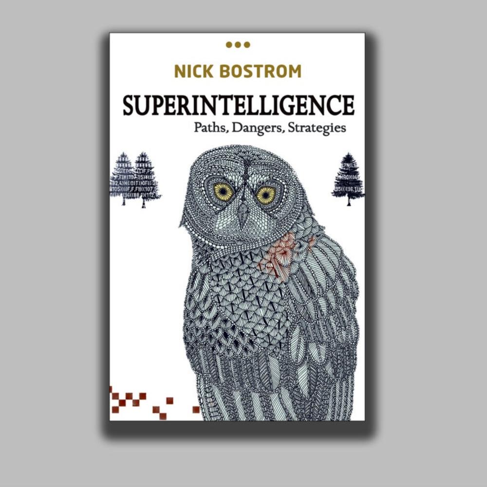 'Superintelligence: Paths, Dangers, Strategies'