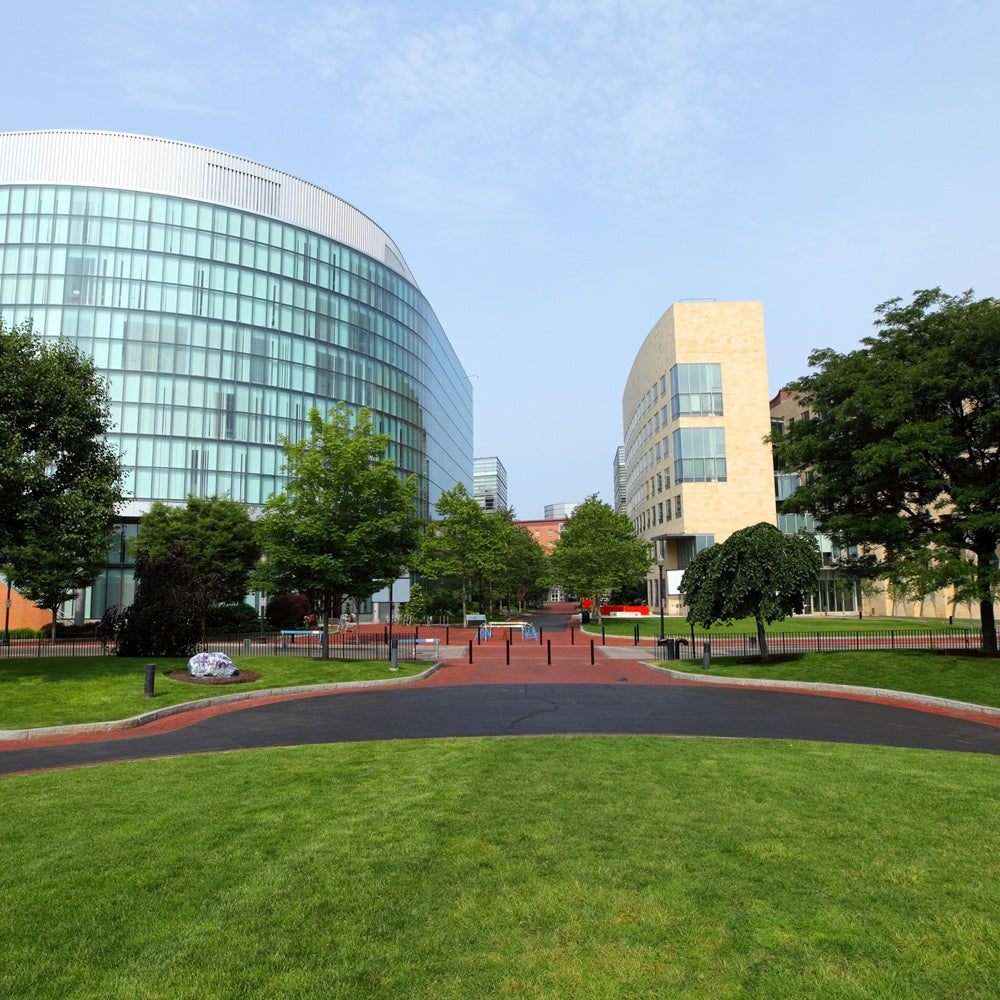 8. Northeastern University
