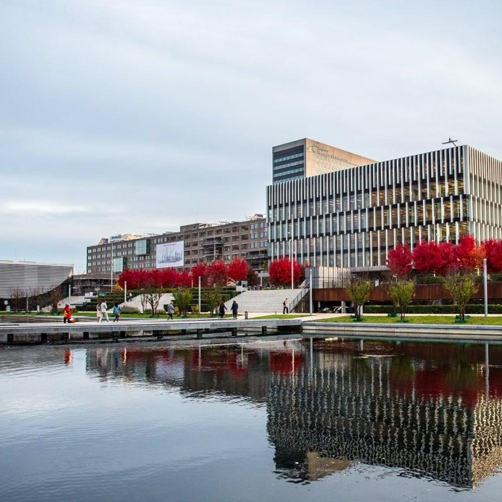 38. Erasmus University Rotterdam