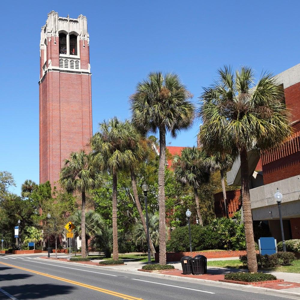 39. University of Florida