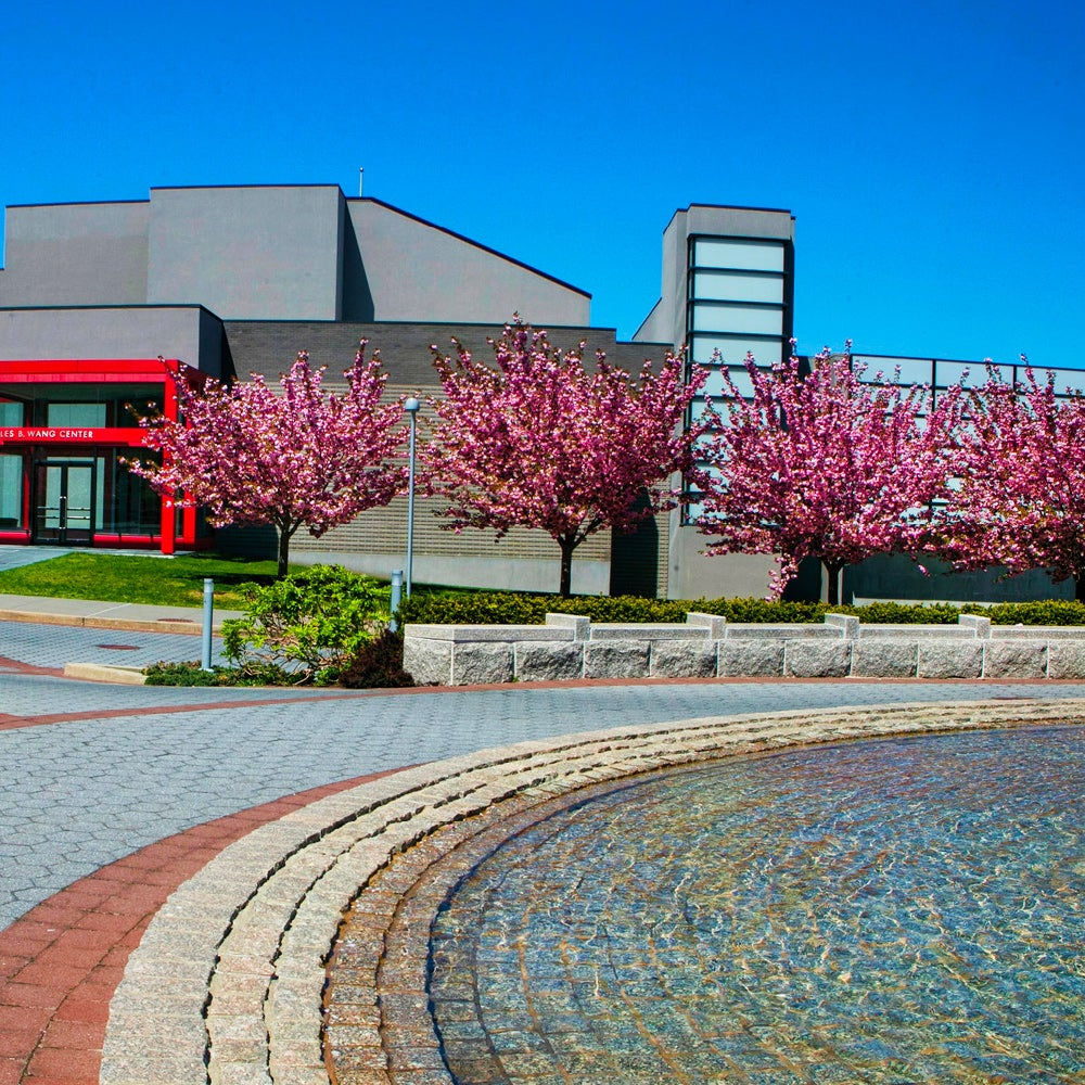 43. State University of New York at Stony Brook