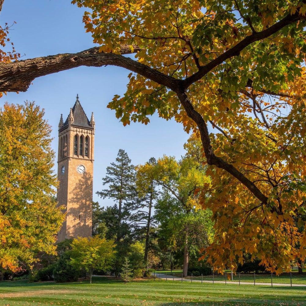 11. Iowa State University