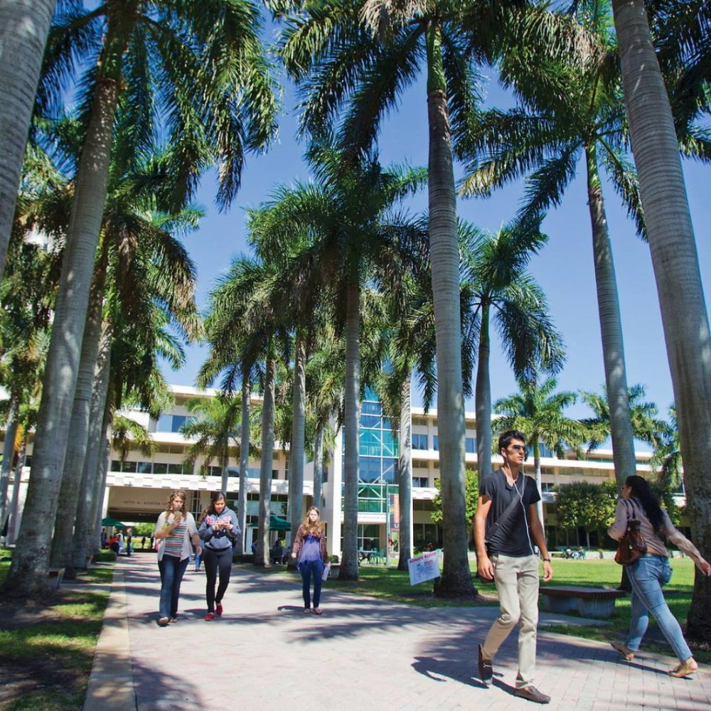 13. The University of Miami