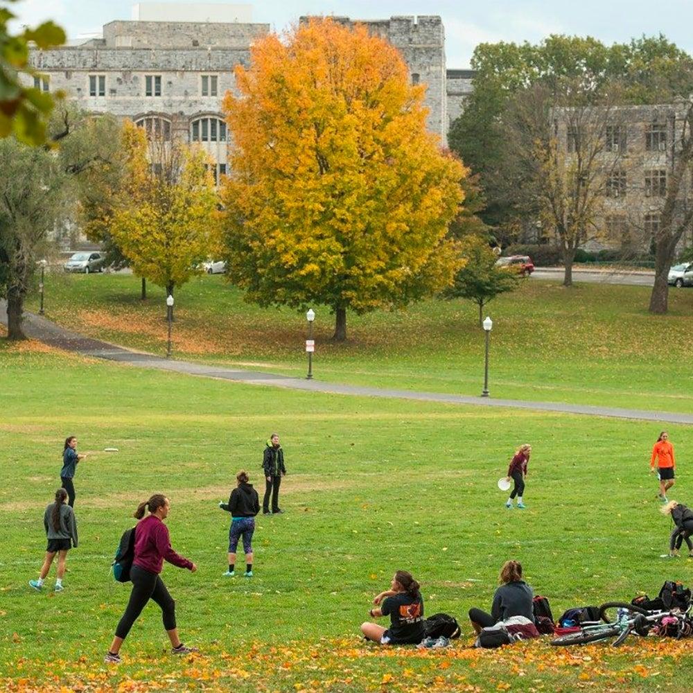 25. Virginia Tech