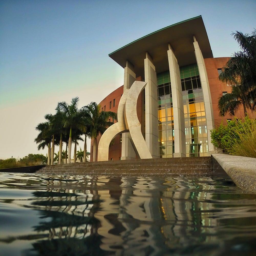 29. Florida Gulf Coast University