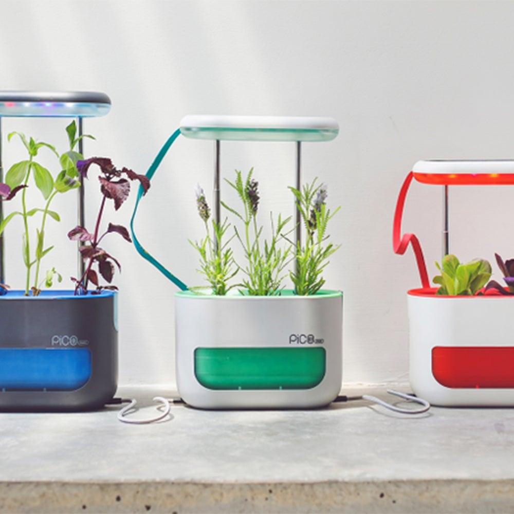 Pico Max Indoor Garden Kit ($69)