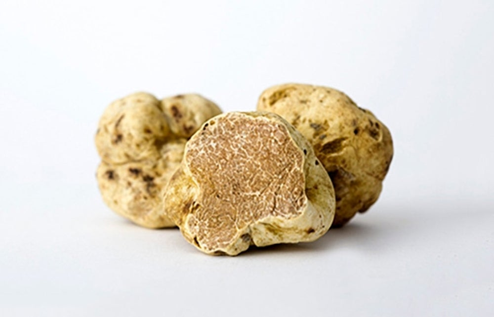 5. A 3.5 oz fresh white truffle