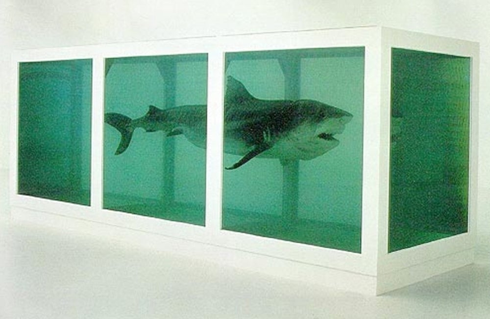 8. Steven Cohen's shark art