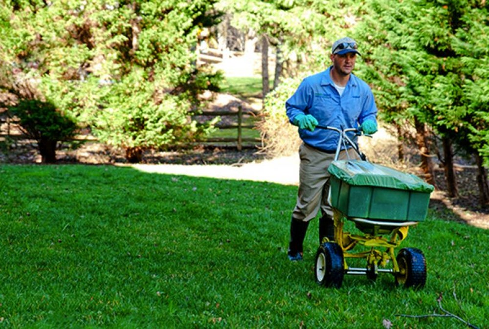 2. Spring-Green Lawn Care