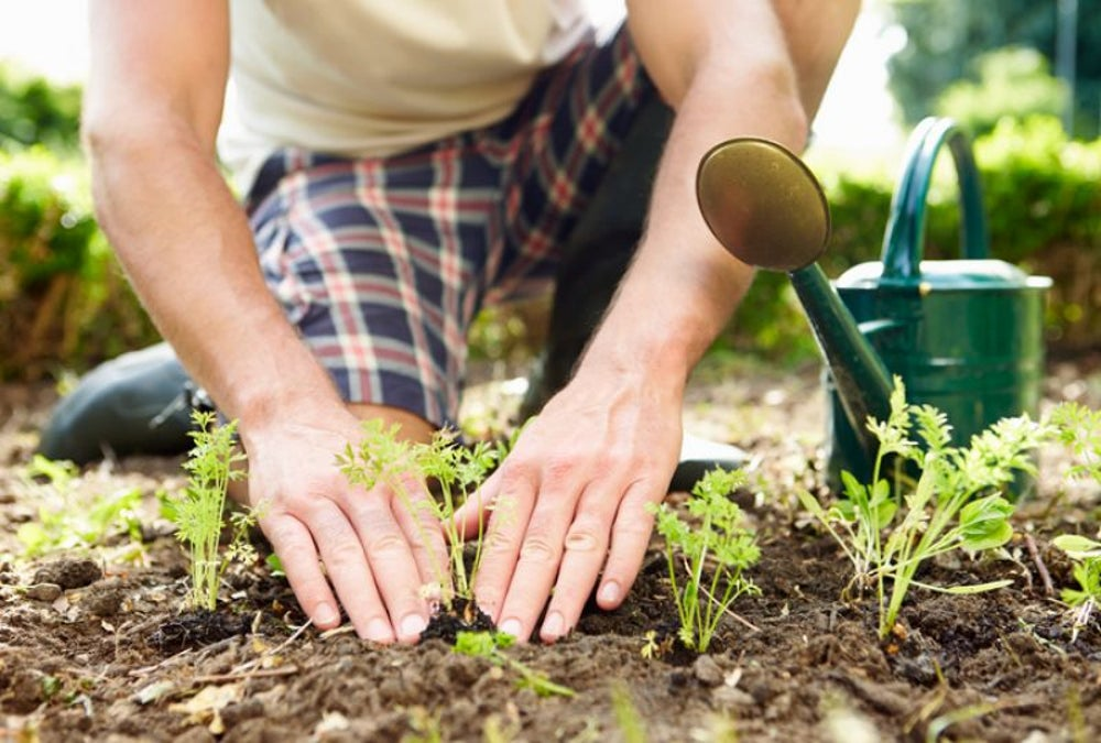 Garden -- or do something that allows you to be in touch with nature.