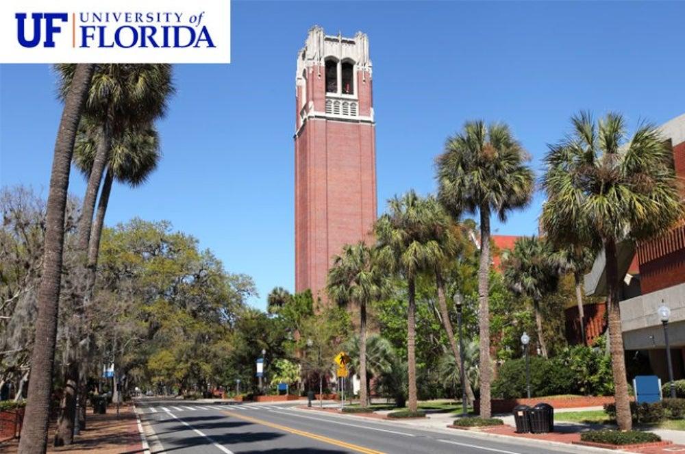 #5 University of Florida