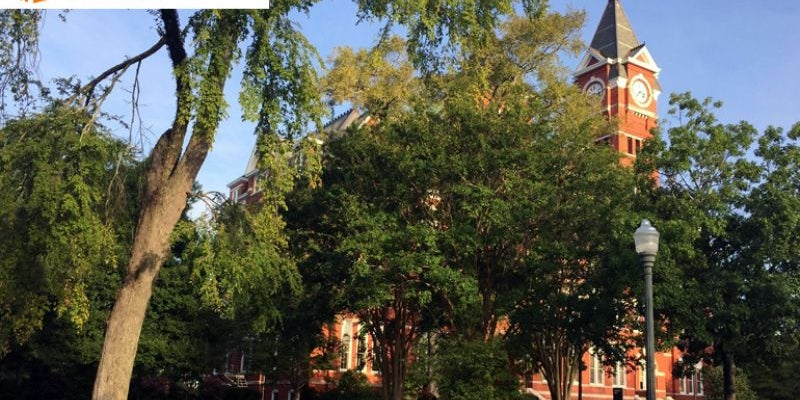#14 Auburn University