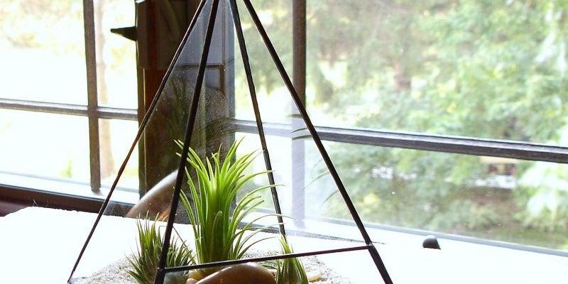 Jechory Design's glass terrariums