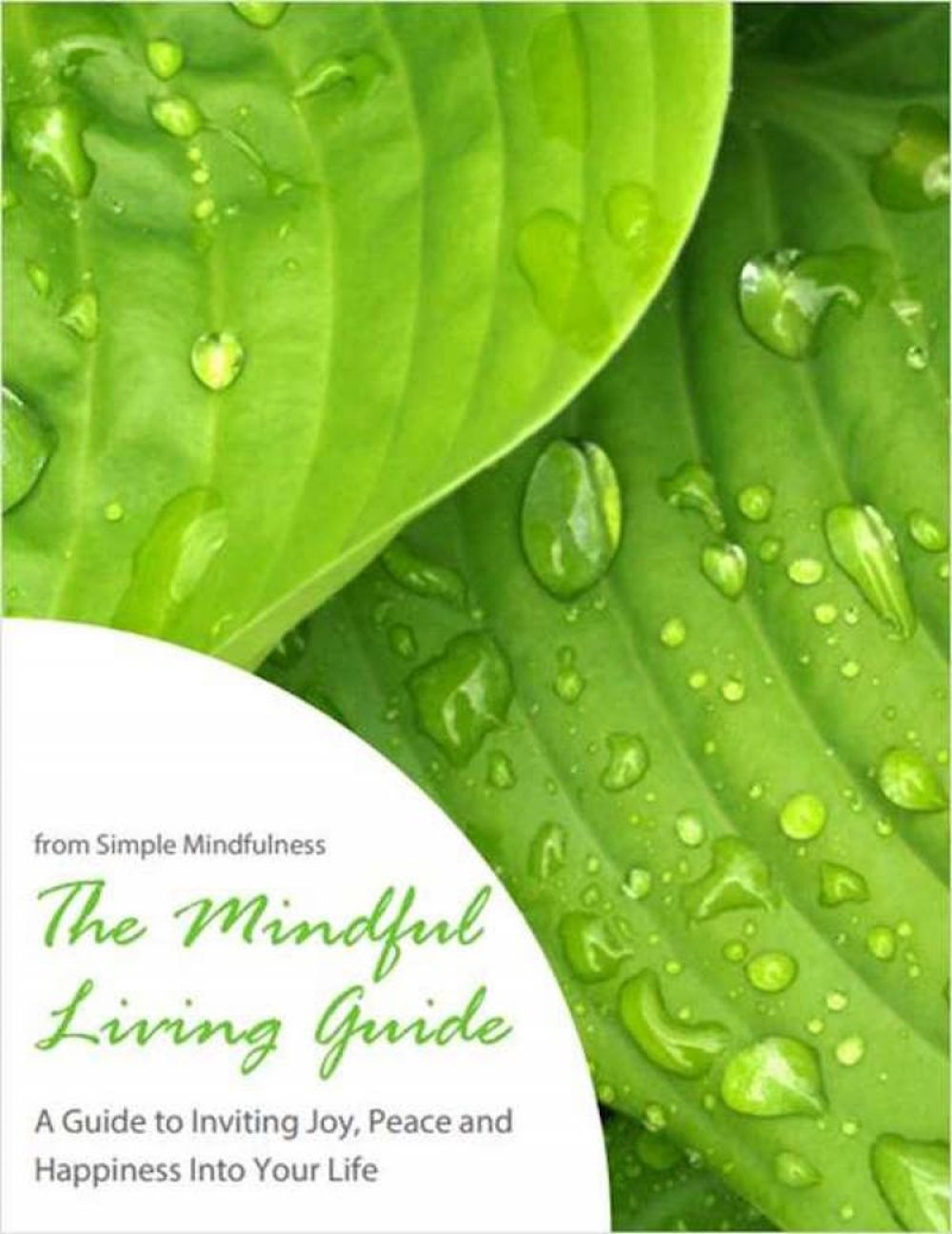 The Mindful Living Guide