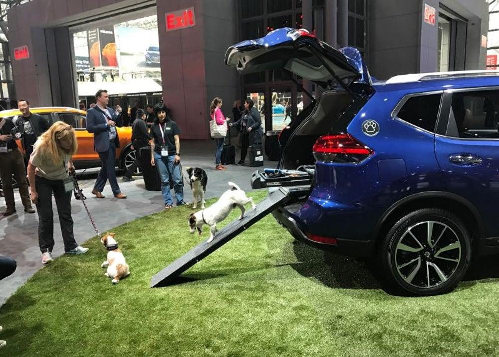 Nissan 'Rogue Dogue'