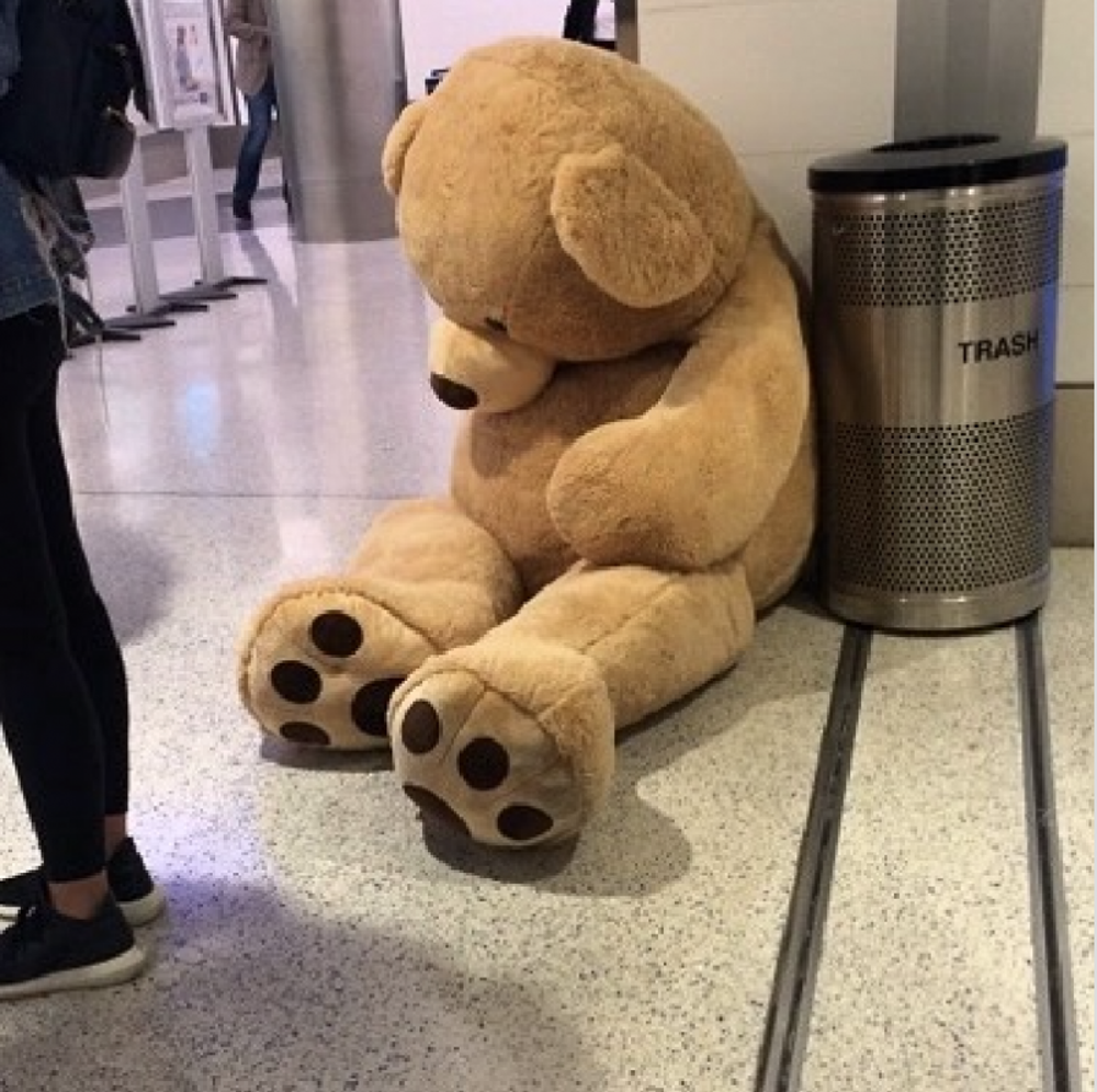 This giant bear