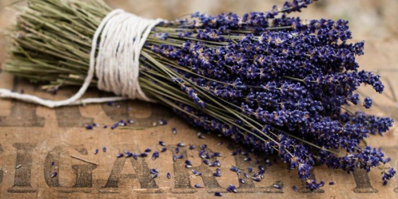 Stop and smell the lavender.