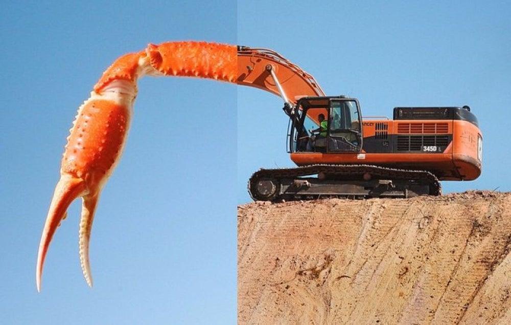 Crab Leg + Excavator