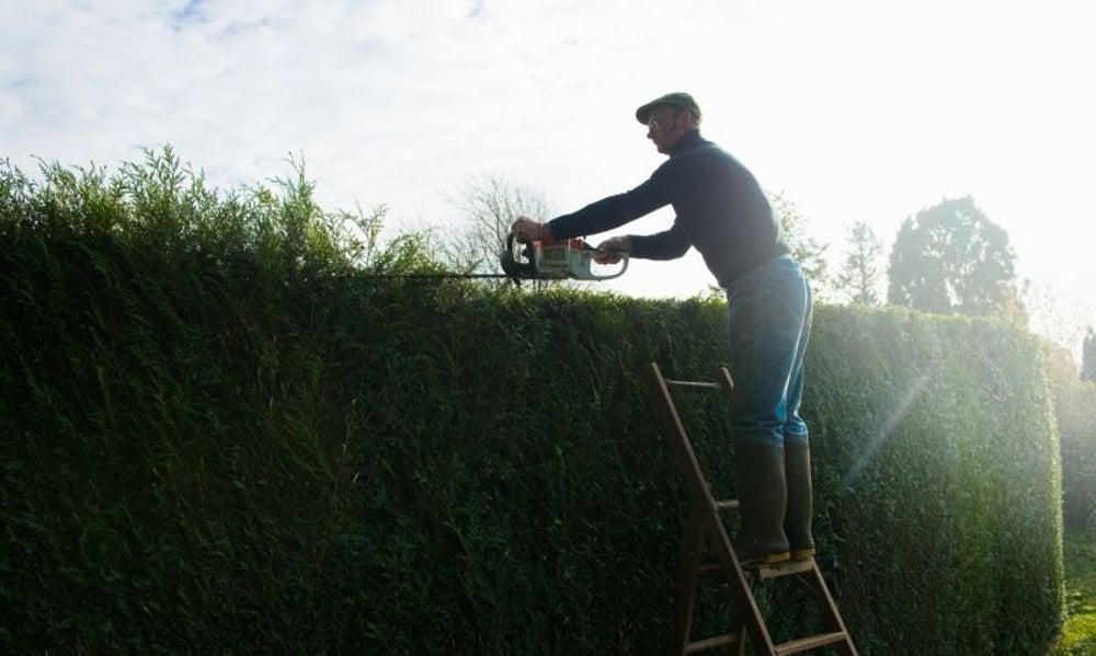 Employing a gardener