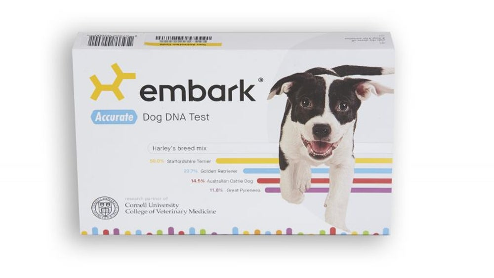 Embark's DNA kit