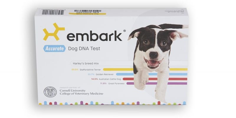Embark's DNA kit