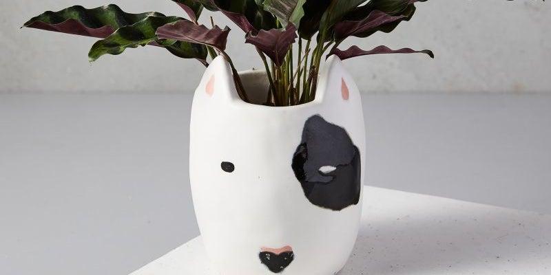 West Elm's ceramic dog planter