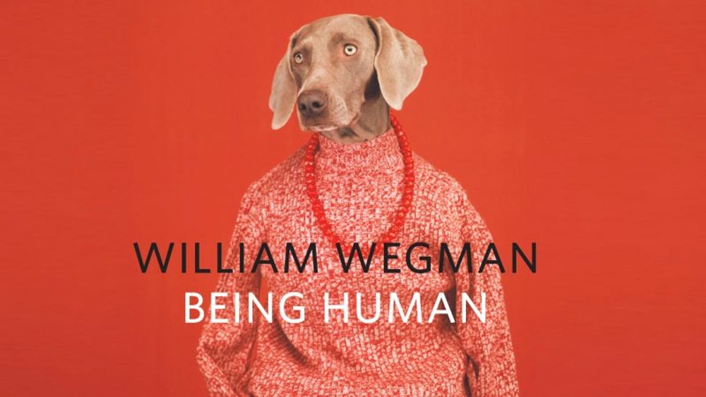 William Wegman's 'Being Human' book