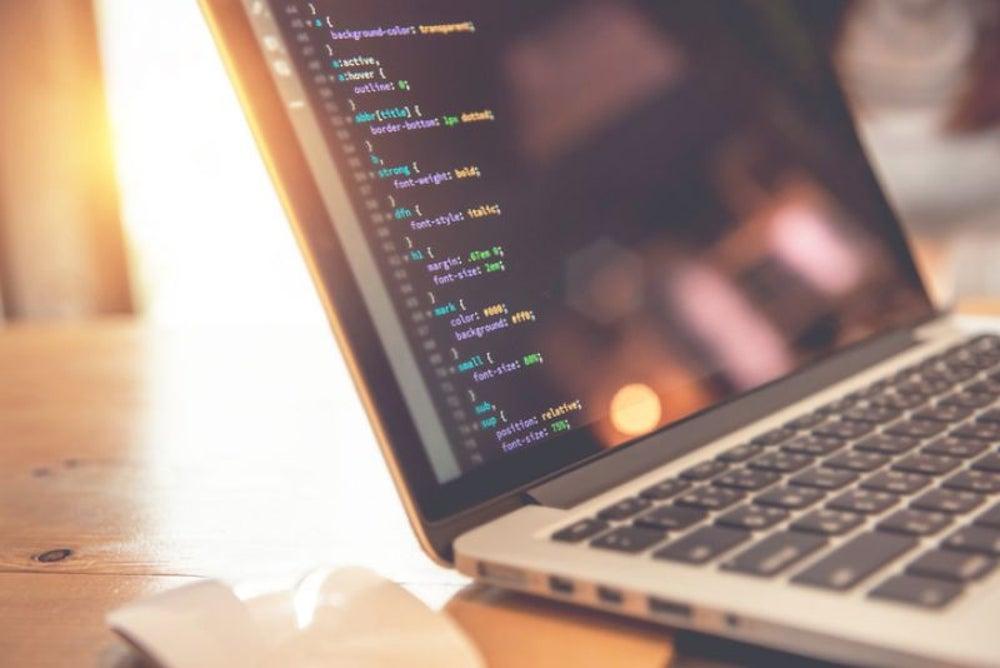 Programmer/coder
