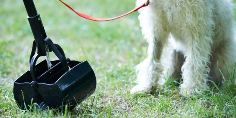 Pet Waste Service Technician