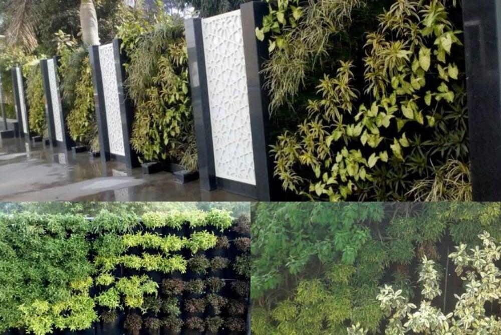 Bio Vertical Garden
