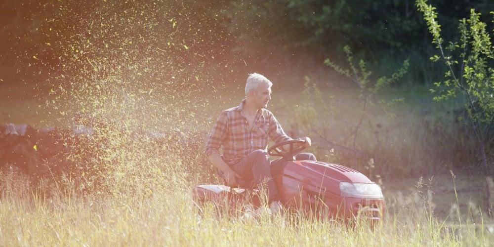 Business idea: Lawn care
