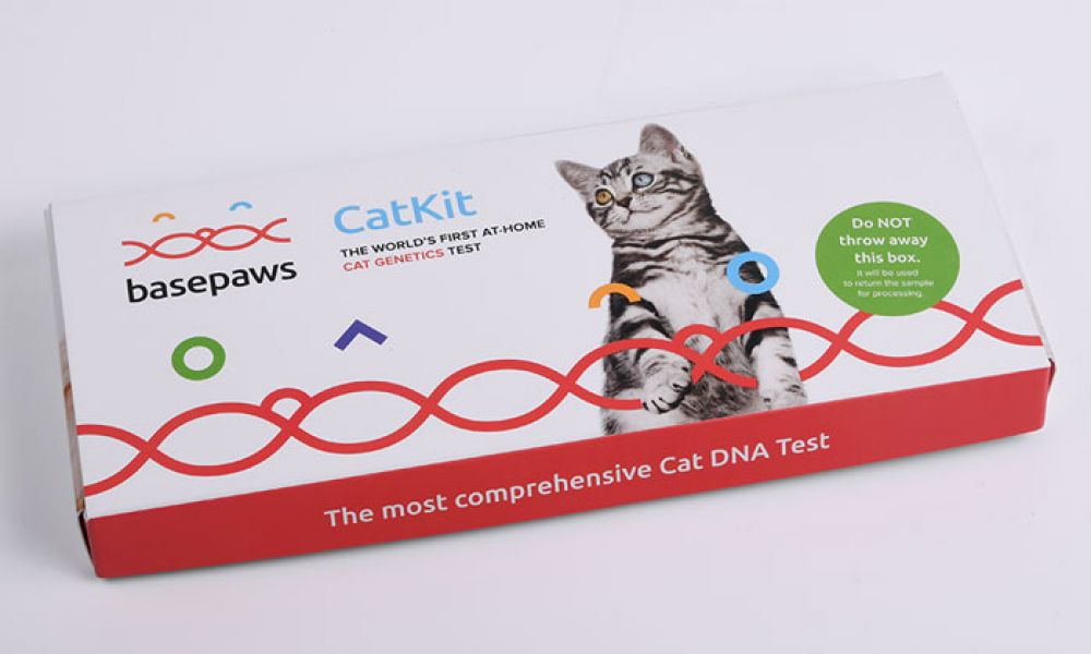A comprehensive cat DNA test.