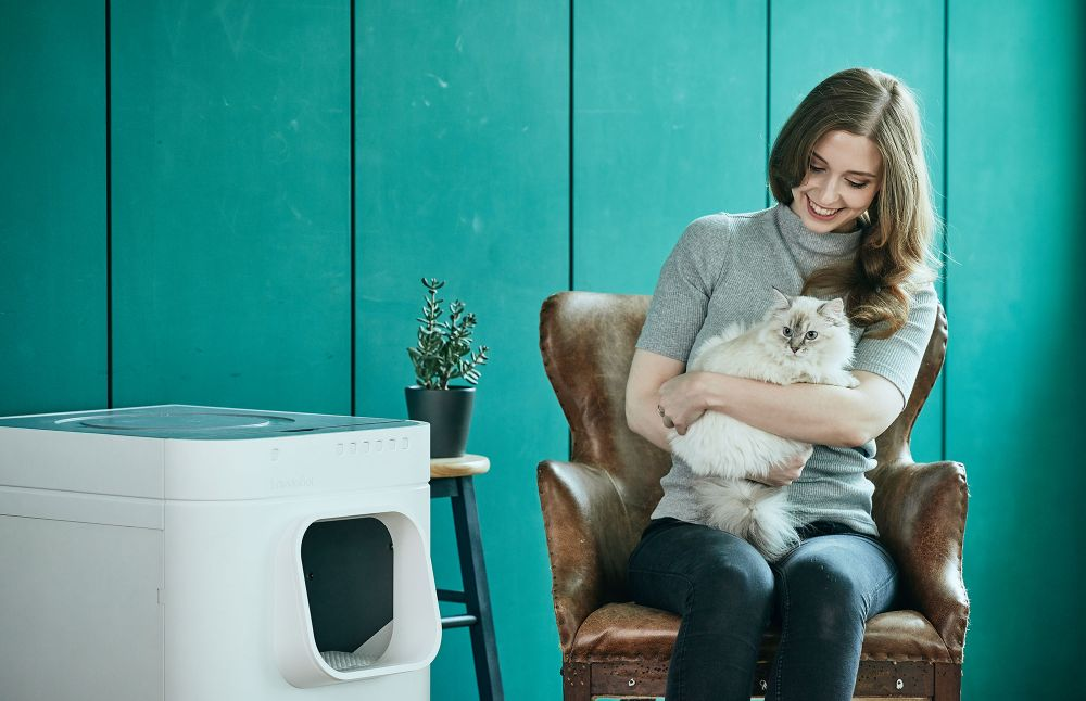 An auto-cleaning cat litter box.
