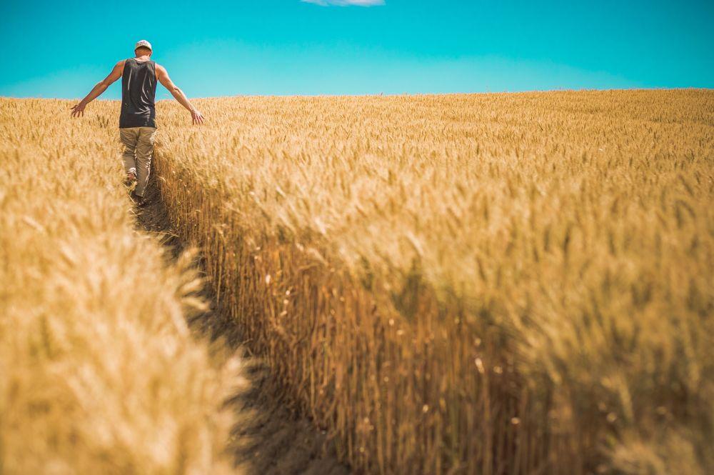 Encourage Farmers