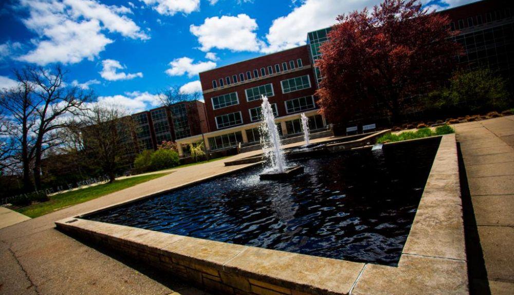 16. Michigan State University
