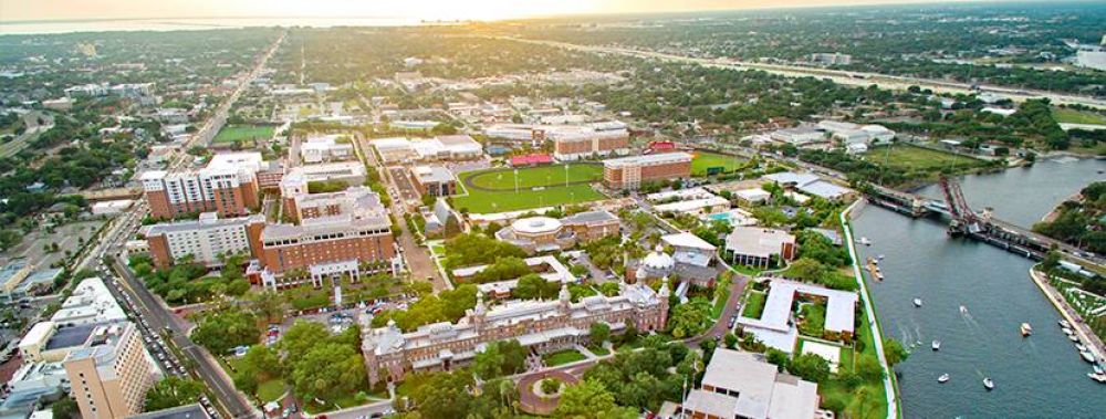 37. The University of Tampa