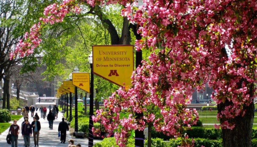 44. University of Minnesota