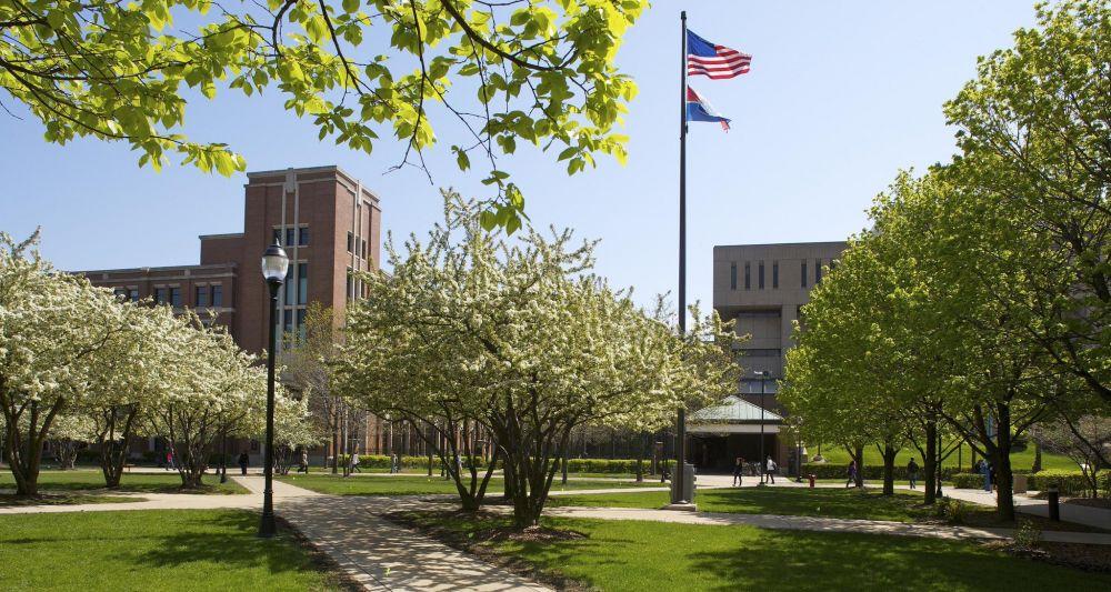 19. DePaul University